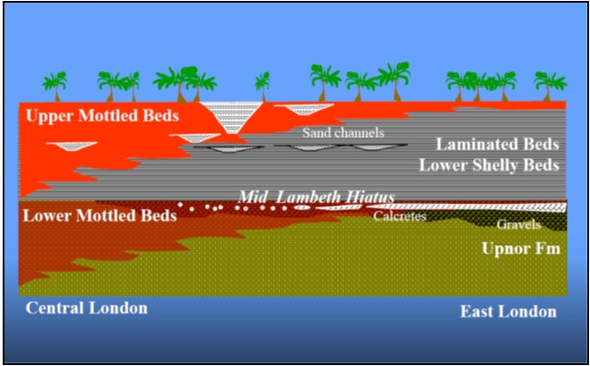Figure 2. Lambeth Group. depositional variability