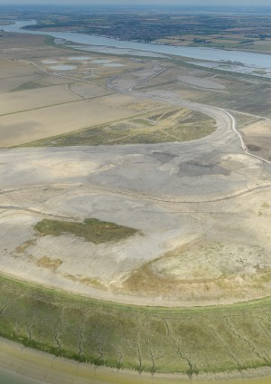 Archaeology archive – Wallasea Island