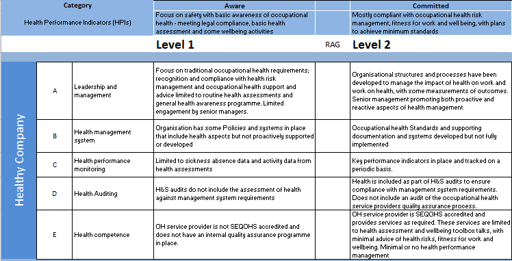 HS06_Fig 04_Health and wellbeing Maturity Matrix.png
