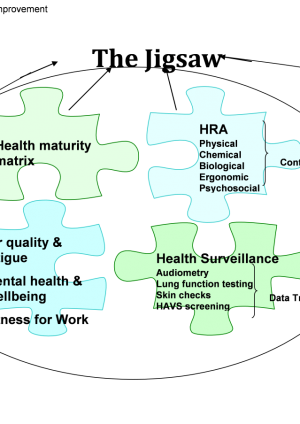 Occupational Health and Wellbeing Strategy