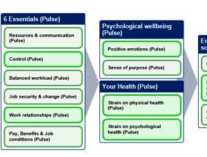 Wellbeing Over Time at Crossrail